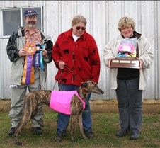 Lure_Coursing_BOB_Abbey_0609