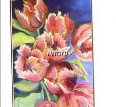 librry art tulips0001