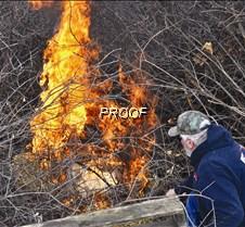 Burning buckthorn-Dave Perryman