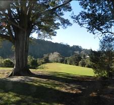 Scenic NZ
