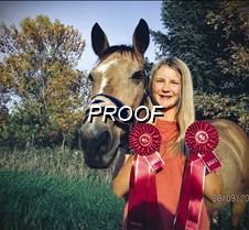 Horse-Ana Engen