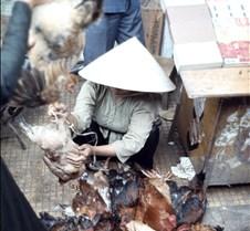 Saigon Market Live Chickens