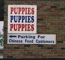 Puppies_chines food