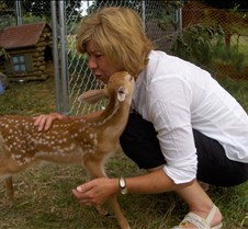 Bambi comes to nuzzle Christine (.//k)