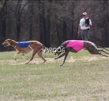 Specials_Run2_Beauson_Dusty_4369_8X10