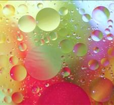 bubbles 2 091xx2