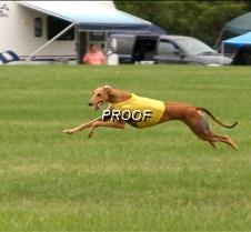 Run2_Course4_2634 copy