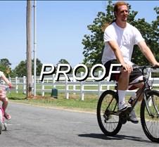 062913_Wildart Bikes04