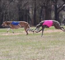 Specials_Run2_Beauson_Dusty_4368_8X10
