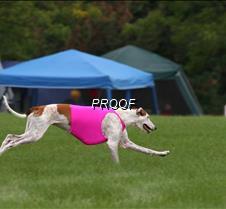 Run2_Course4_IMG_6450 copy