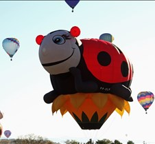 Lady Bug Balloon