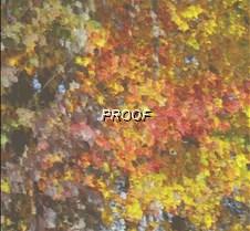 Blended Leaves