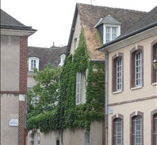 Chartres - Ivy Covered Building