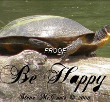Welcome to 3LT Some things make me smile.  The turtle photo makes me laugh.  This fellow has gotten me through some tough days.