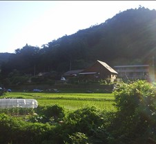 house with rice paddy  foot of mountain