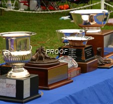 Trophy_Table_4108