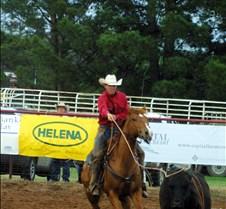 Cowboy roping cow
