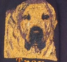Photo Stictch of Dog