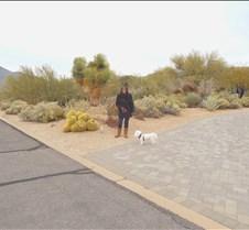 Scottsdale, Arizona 022