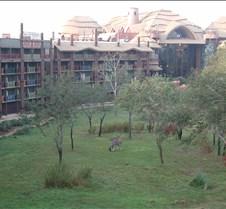 MGM-Disney-Studios003