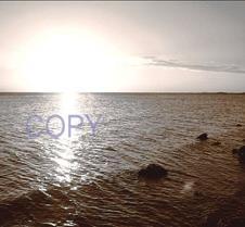 say copy8.jpg