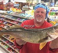 fish rausch