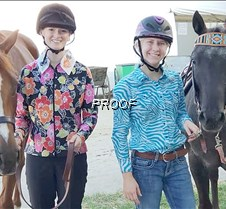 State horse show