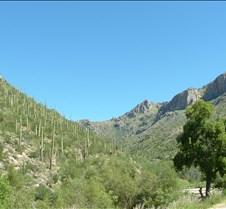 Tucson Sabino Canyon 16