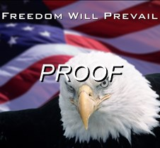 "1. Patriotic Bald Eagle Prints <font size=""-1"" face=""Arial"">