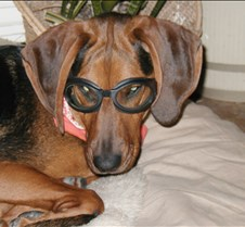 2002 11-06 Jack's goggles