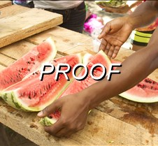 072714_Watermelons05