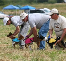 Basenjis_8Jul_Run2_Course3_5206