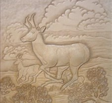 Stohlman antelope