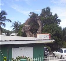 Dcp_0865