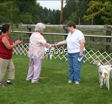 Obedience_Awards (4)