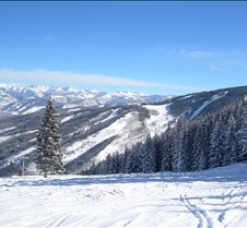 Beaver Creek Bowl Skiing