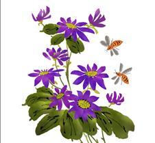 Anemone Blanda & Bees