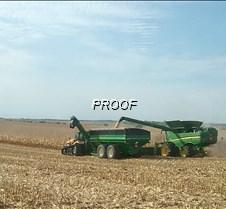 corn harvest begins