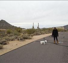 Scottsdale, Arizona 027