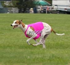 Run2_Course4_IMG_6426 copy