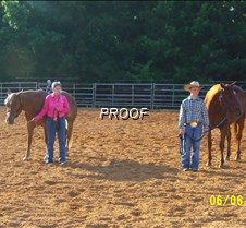 MCEA 6/6/15 McNairy Co. Saddle Club June Show I got as many photos as I could before dark. Some photos may be dark, but I hope to be able to edit them soon to look a little better. Thanks for looking.