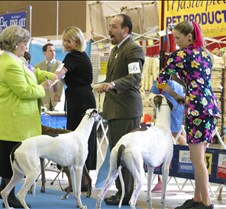 March24Show_Breed_Winners_9705CC