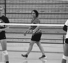vb-coach