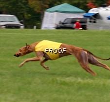 Run2_Course4_IMG_6432 copy