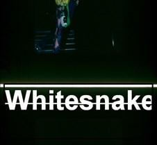 Whitesnake Slides