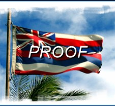 HI flag