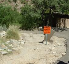 Tucson Sabino Canyon 6