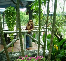 Dorie in Paradise