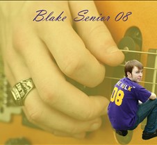 blake collage