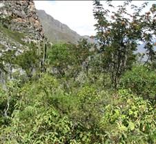 Peru 207